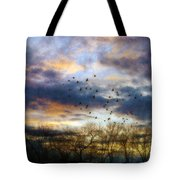 Cloudy Sunset With Bare Trees And Birds Flying Tote Bag
