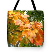Cluster Of Color Tote Bag