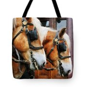 Clydesdale Closeup Tote Bag