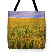 Co Waterford, Ireland Poppies In A Tote Bag