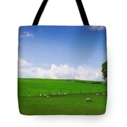 Co Wicklow, Ireland Sheep Tote Bag