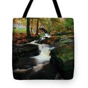 Co Wicklow, Ireland Waterfalll Near Tote Bag