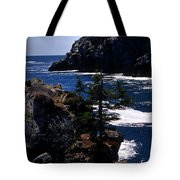 Coastal Maine Tote Bag