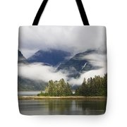 Coastline, Endicott Arm, Inside Tote Bag