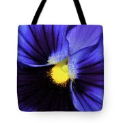 Cobalt Blue Pansy Tote Bag