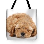 Cockapoo Pup Tote Bag