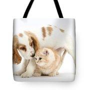Cocker Spaniel And Kitten Tote Bag