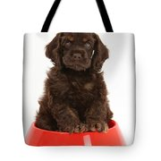 Cocker Spaniel Pup In Doggy Dish Tote Bag by Mark Taylor