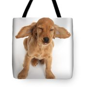 Cocker Spaniel Puppy Making A Face Tote Bag