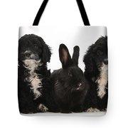 Cockerpoo Pups And Rabbit Tote Bag