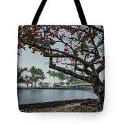 Coconut Island In Hilo Bay Hawaii Tote Bag