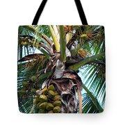 Coconut Palm Inflorescence Tote Bag by Karon Melillo DeVega