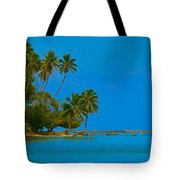 Coconuts Anyone Tote Bag