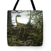 Coelophysis Dinosaurs Walk Amongst Tote Bag