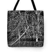 Coexistance Tote Bag