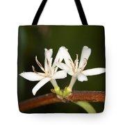 Coffee Flowers Tote Bag