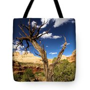 Cohab Canyon At Capitol Reef Tote Bag
