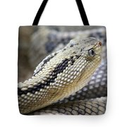 Coiled In Wait Tote Bag