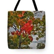 Cold Autumn Breeze  Tote Bag