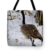 Cold Footed Goose On The Loose Tote Bag