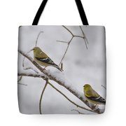 Cold Yellow Finch Walk Tote Bag