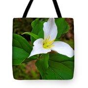 Colin's Trillium Tote Bag