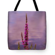 Color By The River Tote Bag