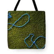 Color Enhanced Tems Of Kleinschmidt Tote Bag by Omikron