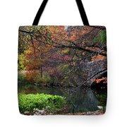 Color Splash In Central Park Tote Bag