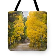 Colorado Autumn Aspen Road Boulder County Tote Bag