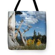 Colorado Hillside Tote Bag