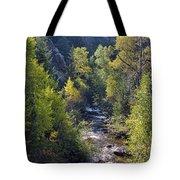 Colorado Left Hand Creek Boulder County Autumn View Tote Bag