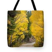 Colorado Rocky Mountain Aspen Road Portrait  Tote Bag