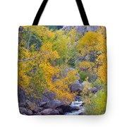 Colorado Rocky Mountain Autumn Canyon View Tote Bag