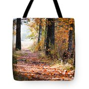 Colorful Autumn Landscape Tote Bag