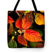 Colorful Blackberry Leaves 1 Tote Bag