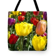 Colorful Bright Tulip Flowers Field Tulips Floral Art Prints Tote Bag