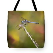 Colorful Dragonfly Dream Tote Bag