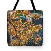 Colorful Fall Leaves Over Blue Water Tote Bag