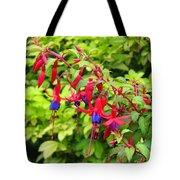 Colorful Fuchsia Tote Bag