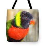 Colorful Lorikeet Parrot Tote Bag