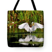 Colorful Morning At The Wetlands Tote Bag