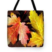Colorful Pair Tote Bag