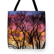 Colorful Silhouetted Trees 26 Tote Bag