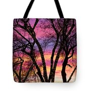 Colorful Silhouetted Trees 33 Tote Bag