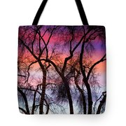 Colorful Silhouetted Trees 9 Tote Bag