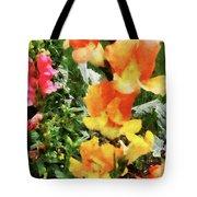 Colorful Snapdragons Tote Bag