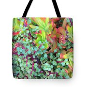 Colorful Succulent Plants For You Tote Bag