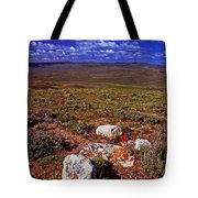 Colorful Valley From Fossil Lake Trail Tote Bag