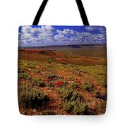 Colorful Valley From Fossil Lake Trailsil Bu Tote Bag